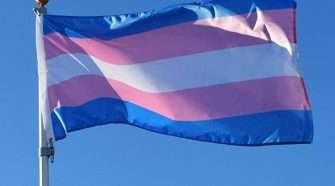 Trans fair day celebrate diversity