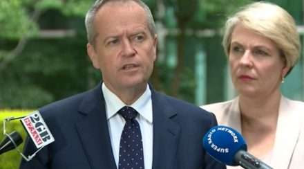 Labor leader Bill Shorten and Tanya Plibersek