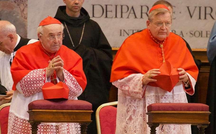 Catholic Cardinals Raymond Burke and Walter Brandmüller