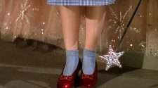 the wizard of oz dorothy red slippers