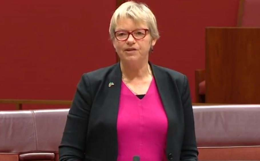 Green senator Janet Rice