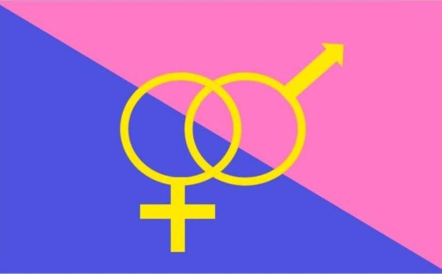 straight pride parade boston flag pride month