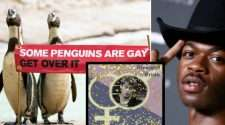 hatersville lil nas x straight pride gay penguins