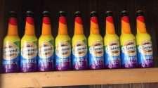 pride rainbow beer bottle turkey