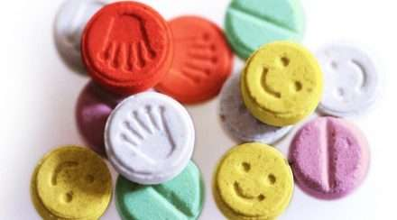 drugs pills ecstasy mdma pill testing australia grooving the moo