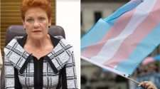 pauline hanson transgender awareness week senate motion greens janet rice amnesty international
