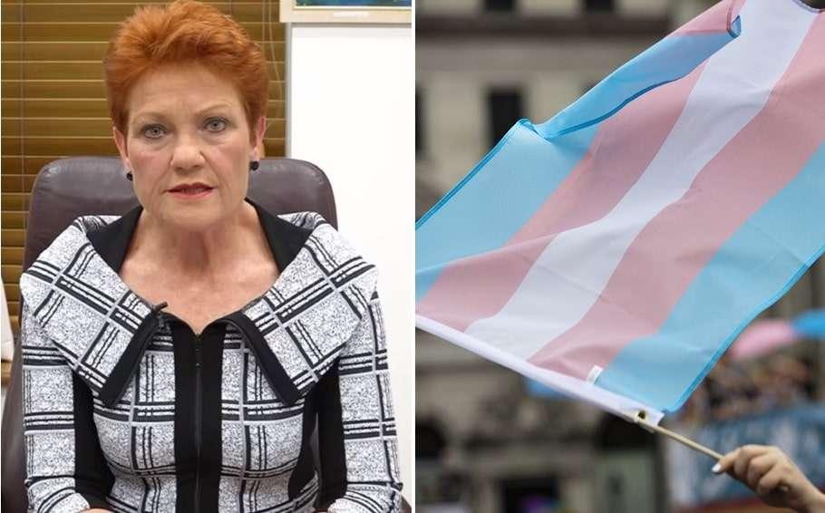 pauline hanson transgender awareness week senate motion greens janet rice amnesty international