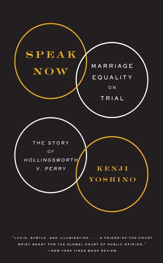 speak now book marriage equality US