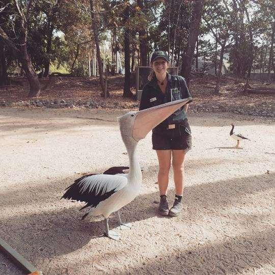 cairns wildlife lovers