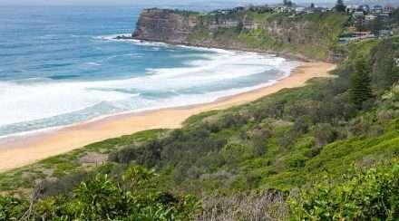narrabeen beach nsw gay bashing