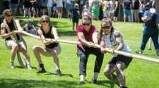 feast festival picnic