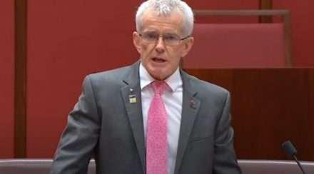 one nation senator malcolm roberts