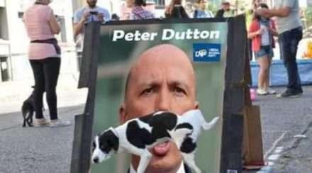peter dutton woke morning teas