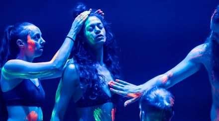 Brisbane Festival Theatre Considerable Sexual License
