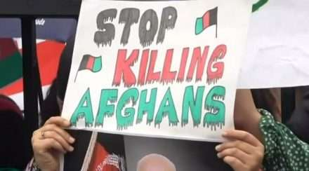 Gay afghanistan getting murdered by the taliban